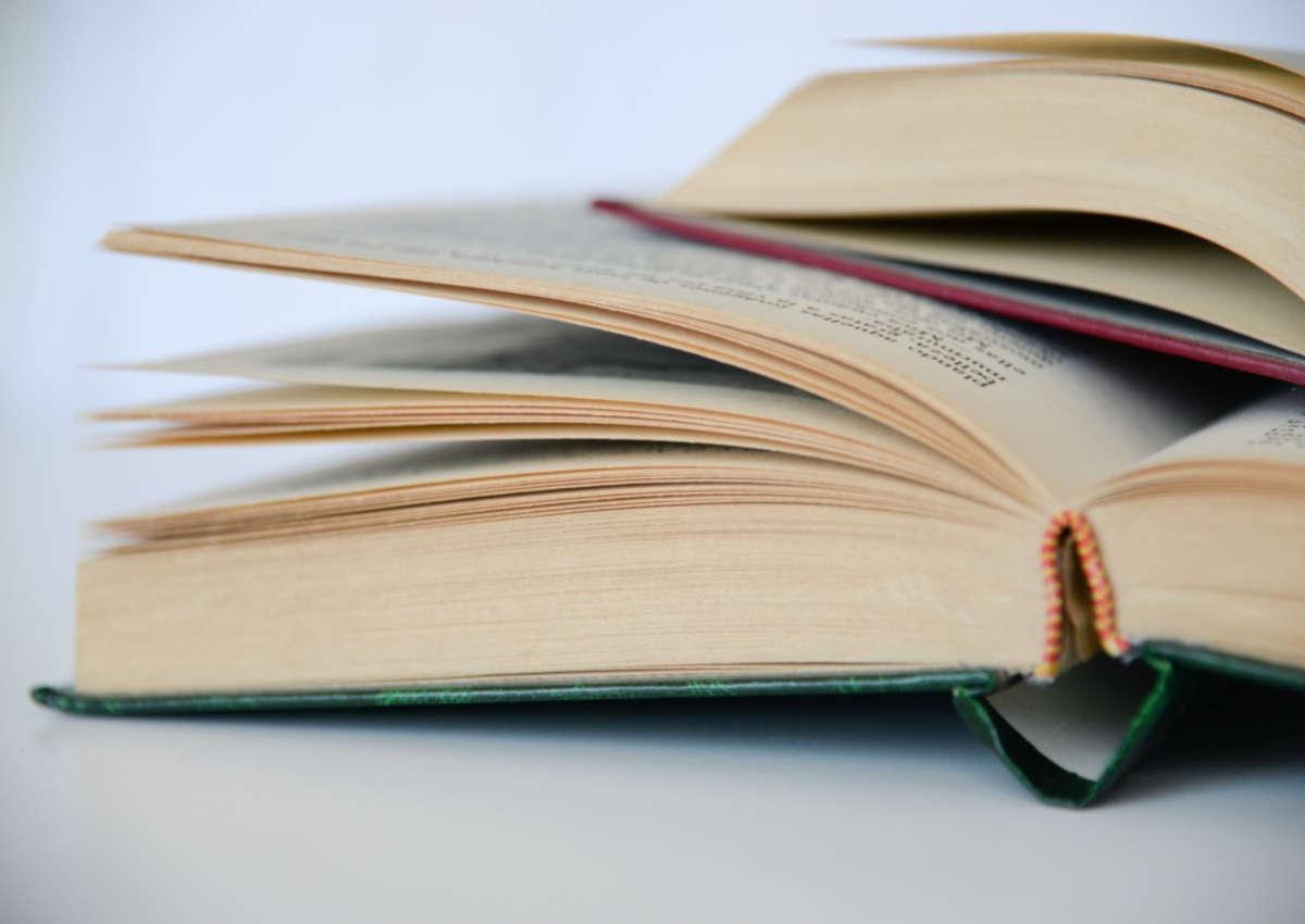 5 raisons pour lesquelles vous devriez écrire un livre cette année